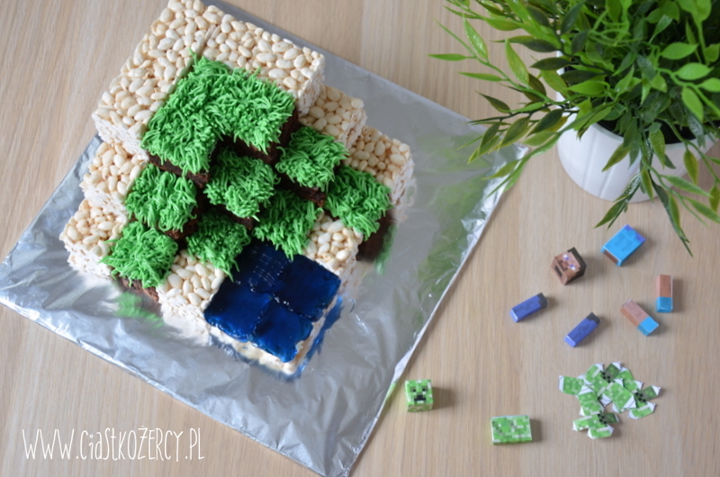 Tort Minecraft 14