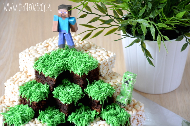 Tort Minecraft 16