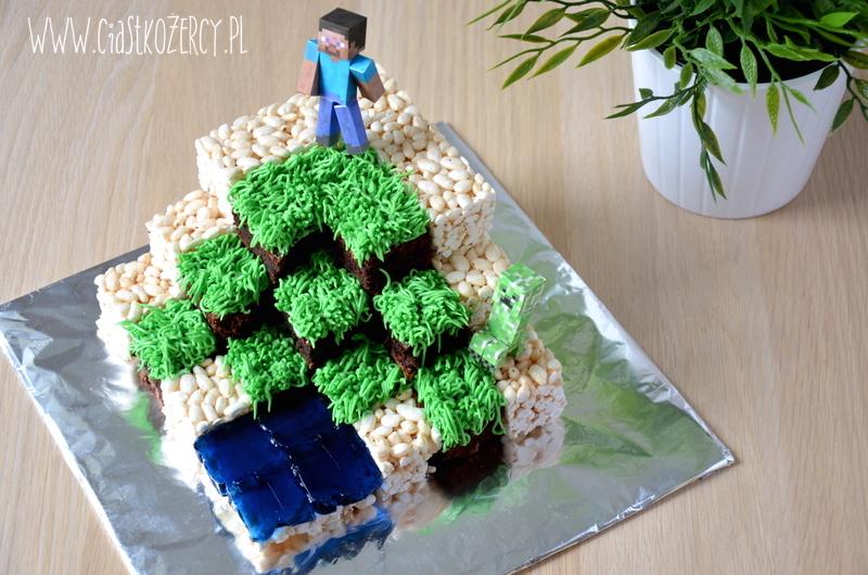 Tort Minecraft 18