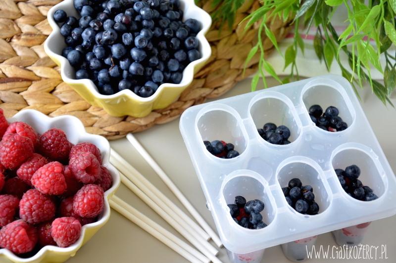 Lody owoce leśne 5